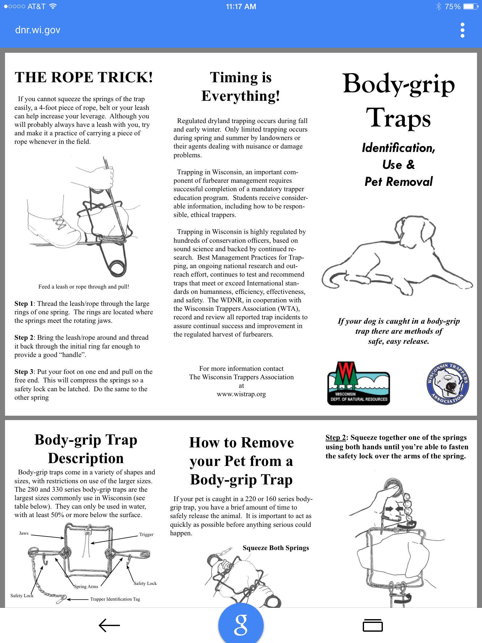 how to set animal body traps