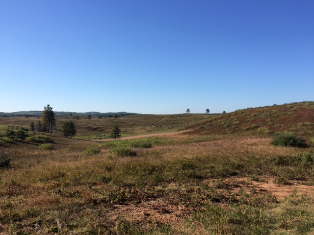 A view of the Moquah Barrens Research Natural Area, 2015.